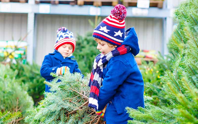 family friendly christmas tree sales